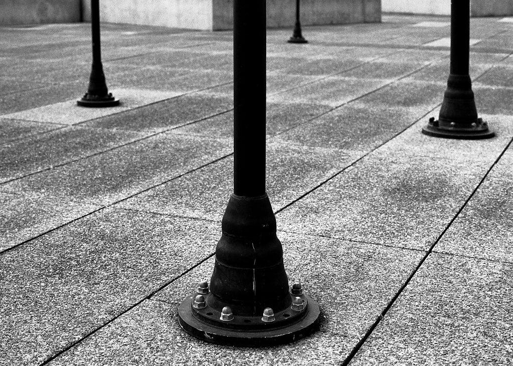 """Fotografia z cyklu """"Ślady i tropy"""""""