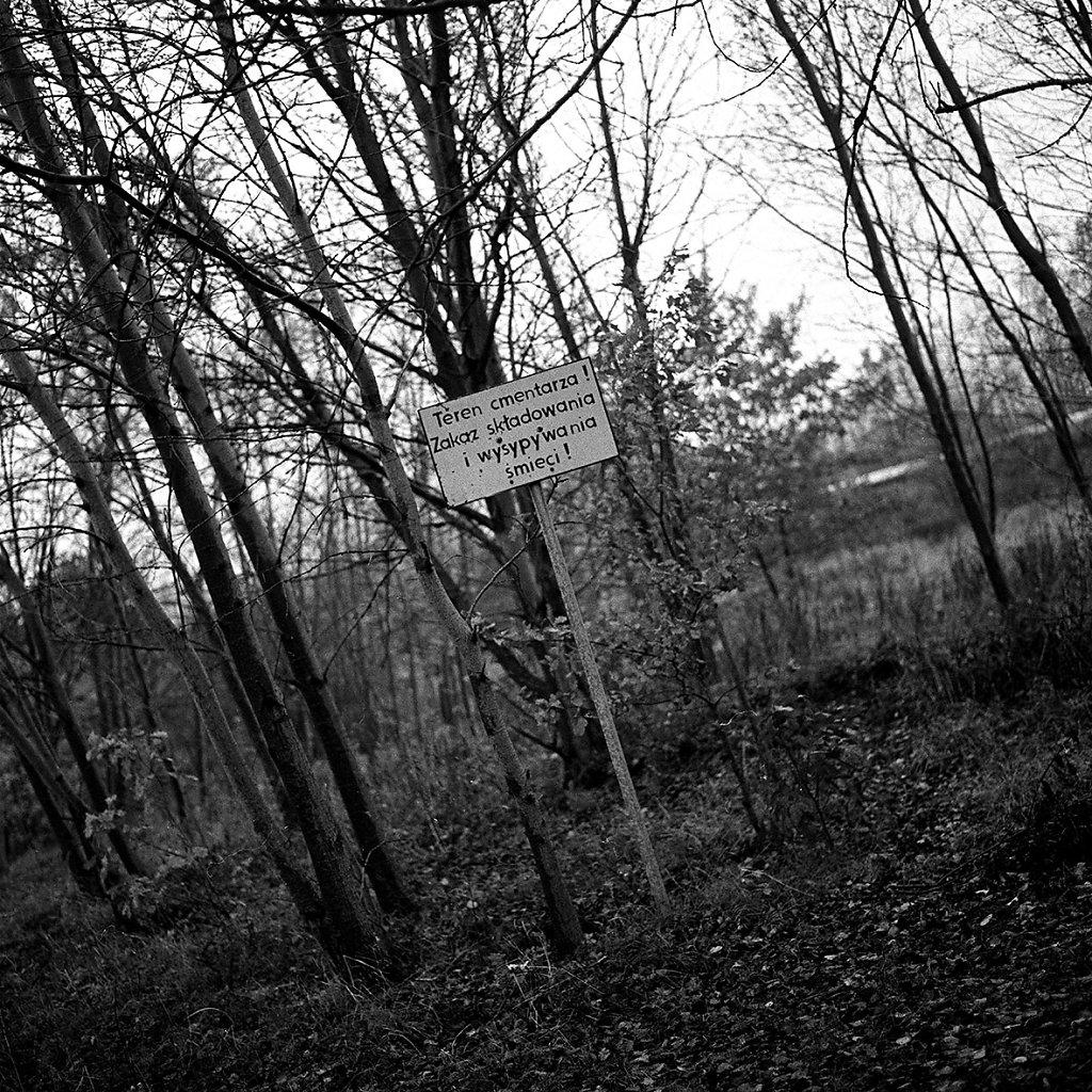 Teren-cmentarza-fot-artur-rychlicki-10.jpg