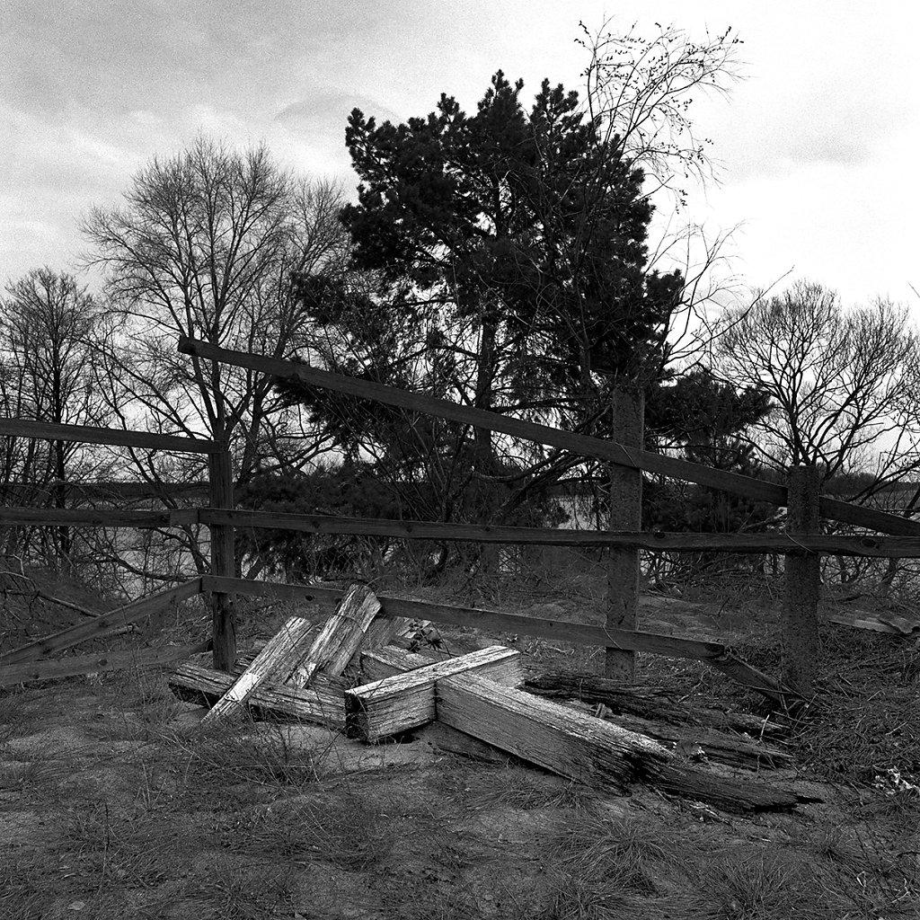 Ogrody-szczesliwosci-fot-Artur-Rychlicki-1-14.jpg