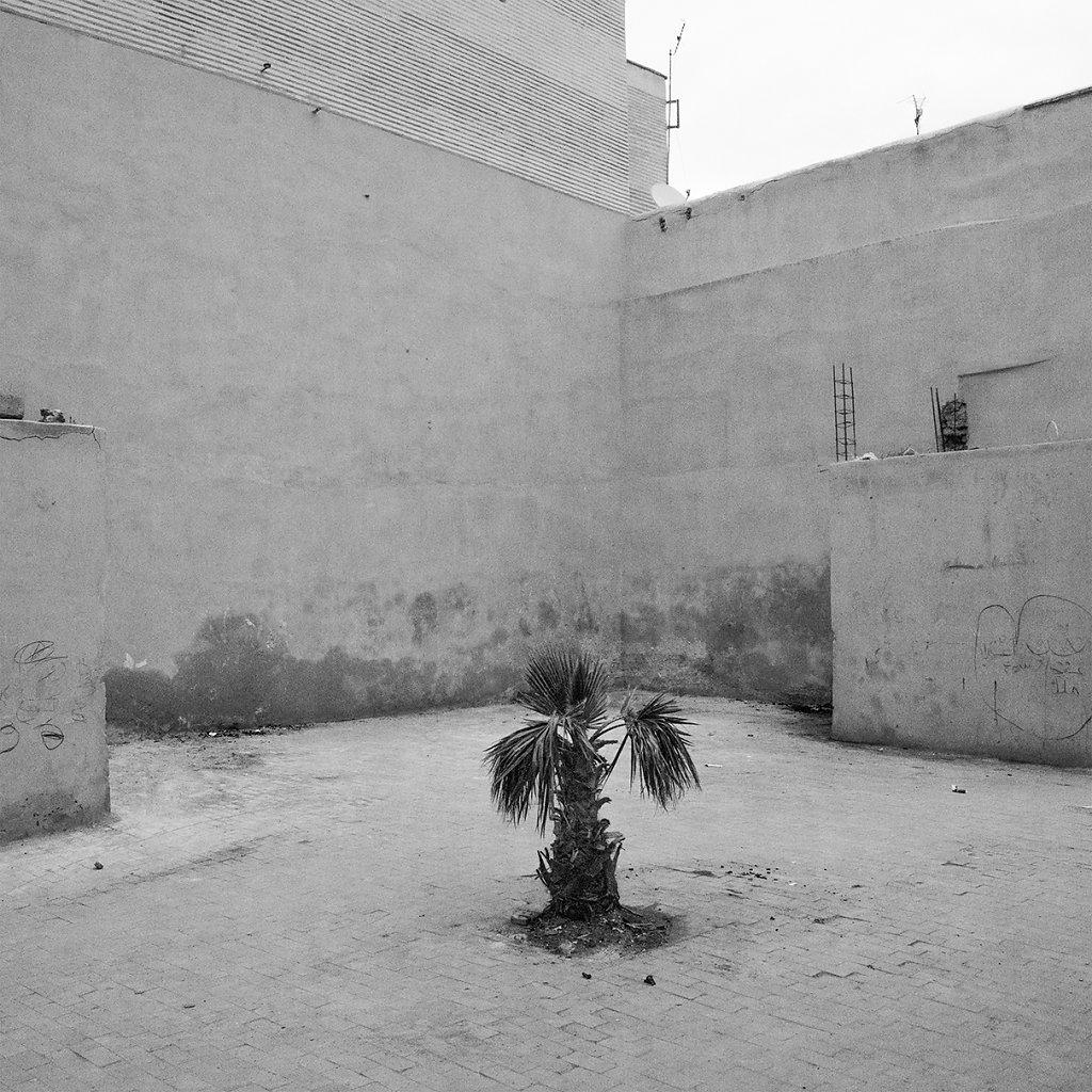 Ogrody-szczesliwosci-fot-Artur-Rychlicki-1-18.jpg