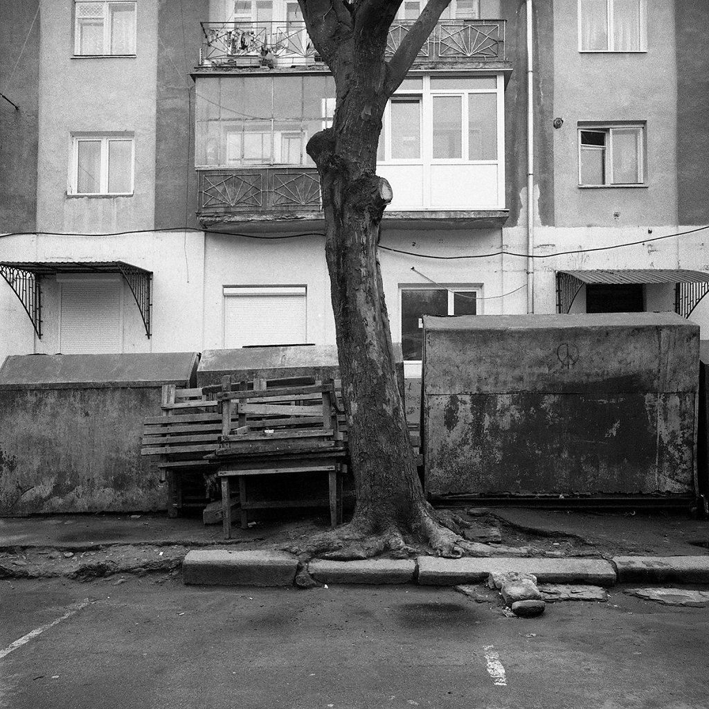 Ogrody-szczesliwosci-fot-Artur-Rychlicki-1-19.jpg