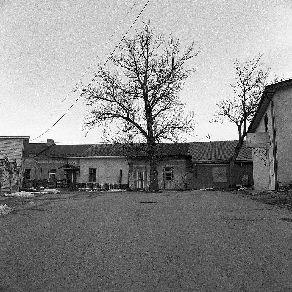 Ogrody-szczesliwosci-fot-Artur-Rychlicki-1-20.jpg
