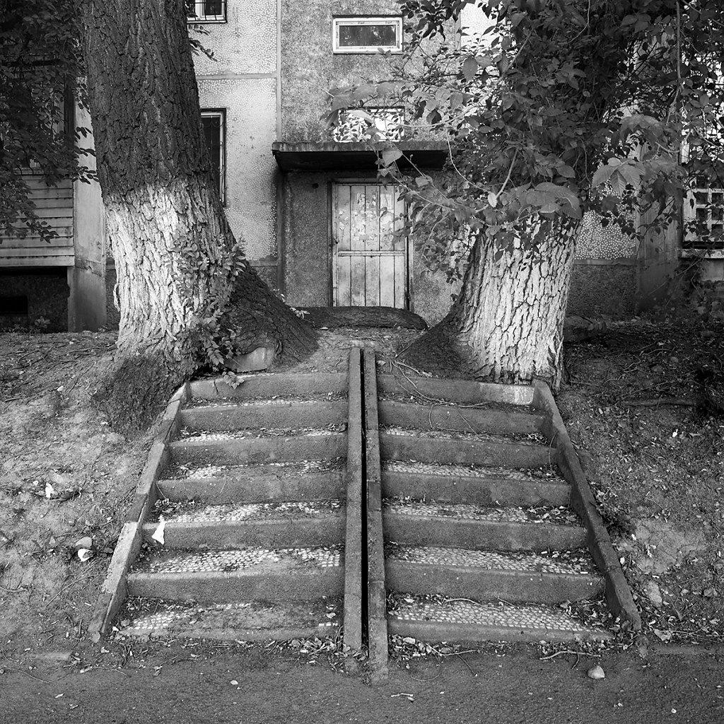 Ogrody-szczesliwosci-fot-Artur-Rychlicki-1-21.jpg