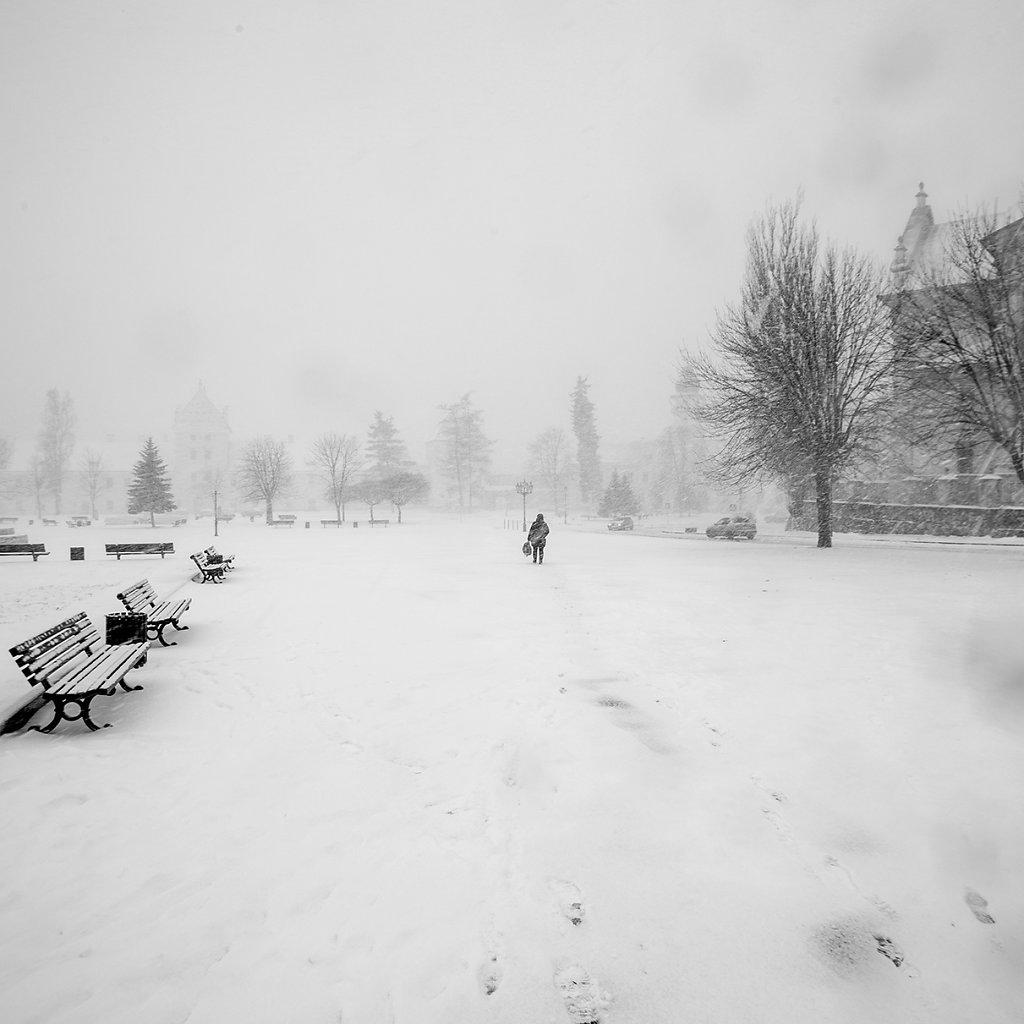 Ogrody-szczesliwosci-fot-Artur-Rychlicki-1-33.jpg