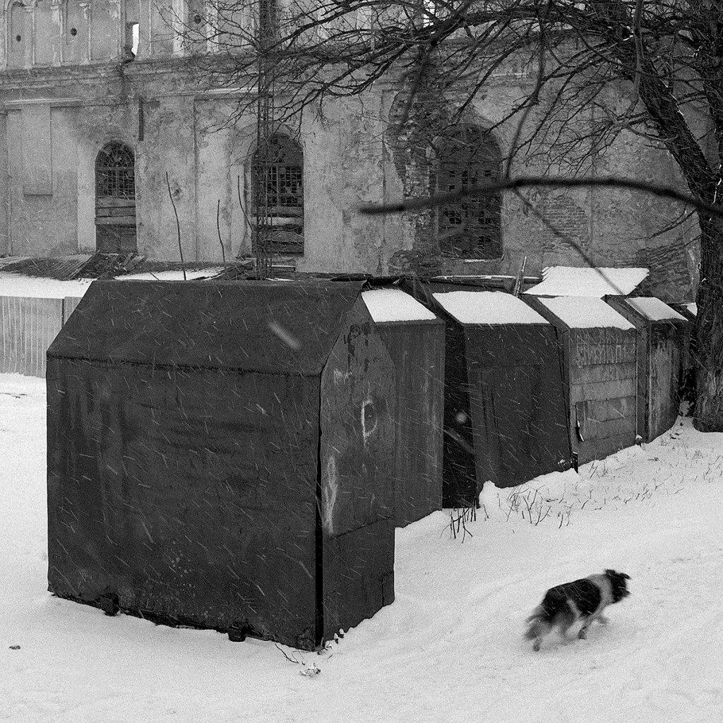 Ogrody-szczesliwosci-fot-Artur-Rychlicki-1-48.jpg